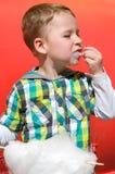 Rapaz pequeno que come o algodão doce Imagens de Stock