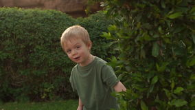 Rapaz pequeno que esconde atrás de uma árvore, movimento lento