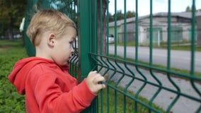 Rapaz pequeno que espreita através de uma cerca de fio video estoque