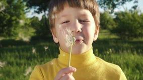 Rapaz pequeno que funde - acima do dente-de-leão no parque video estoque