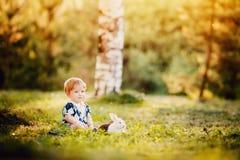 Rapaz pequeno que joga com coelhos no parque imagens de stock