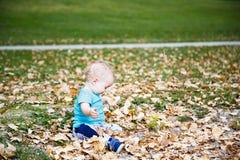Rapaz pequeno que joga com folhas Fotografia de Stock