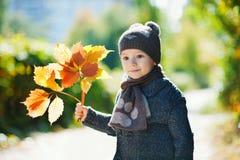 Rapaz pequeno que joga com folhas de outono fotos de stock