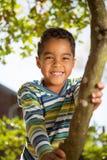 Rapaz pequeno que joga em uma árvore Fotografia de Stock