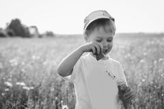 Rapaz pequeno que joga no campo Fotos de Stock Royalty Free