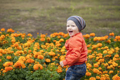 Rapaz pequeno que joga no campo de jogos no parque do outono Foto de Stock Royalty Free