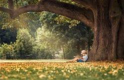 Rapaz pequeno que lê um livro sob a árvore de Linden grande