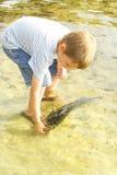 Rapaz pequeno que libera peixes Fotografia de Stock Royalty Free
