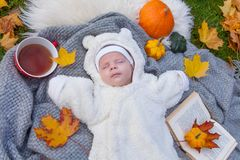 Rapaz pequeno que relaxa no parque do outono fotografia de stock