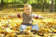 Rapaz pequeno que senta-se nas folhas foto de stock royalty free