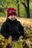 Rapaz pequeno que senta-se nas folhas de outono, rir, olhando slyly, imagem de stock