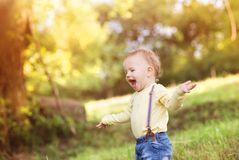 Rapaz pequeno que tem o divertimento em um prado Imagens de Stock Royalty Free