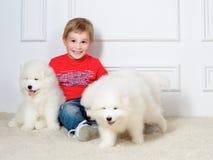 Rapaz pequeno três anos de jogo velho com cachorrinhos brancos Fotos de Stock