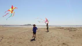 Rapazes pequenos felizes que têm o divertimento e que voam papagaios na praia filme