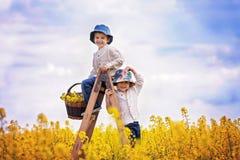 Rapazes pequenos felizes, sentando-se em uma escada de madeira no fie amarelo da violação Imagem de Stock