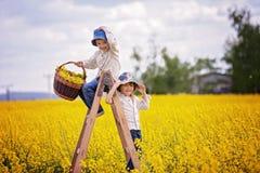 Rapazes pequenos felizes, sentando-se em uma escada de madeira no fie amarelo da violação Fotografia de Stock
