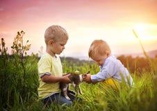 Rapazes pequenos que têm o divertimento em um prado Imagem de Stock