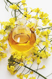 Rape blossoms and canola oil in jug Royalty Free Stock Images