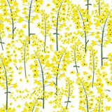 canola flower seamless vector stock illustration