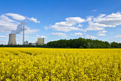 Rape field and coal plant Royalty Free Stock Image
