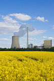 Field and coal plant. Field and power plant under a blue sky stock image
