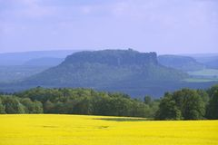 field in early spring in Saxony, Germany. royalty free stock photos
