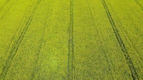 field flying drone stock footage