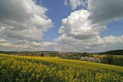 Rape field in Hagen, Germany Stock Photos