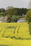 Rape field with old houses in May, Hilter, Osnabrueck country region, Germany Stock Photos