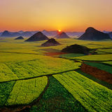 Rape field sunrise. Landscape rape field sunrise china Stock Photography