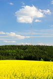 Rape field and transmission tower Royalty Free Stock Photo