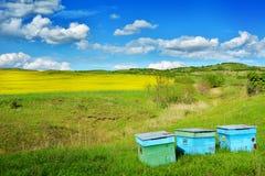 Field in Transylvania - Romania.  royalty free stock photos