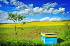 Field in Transylvania - Romania.  stock photography