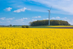 Field and wind turbine. The picture shows a field and a wind turbine stock photo