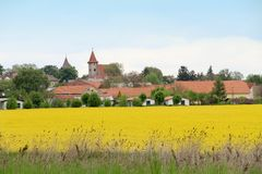 Rape fields in spring Kutna Hora Czech Republic Royalty Free Stock Images