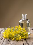 Rape flower on wooden table Royalty Free Stock Images