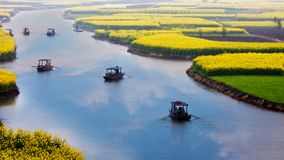 Flower field landscape, Jiangsu, China. Flowers field with travelers in boats, rainy spring but with sunny sky clouds reflection in river stock photography