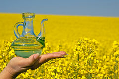 Rape oil, bottle, blossoming rape field Stock Photography