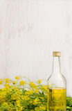 Rape oil in glass bottle on white wooden background Stock Image
