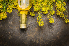 Rape oil and Rape blossoms on dark rustic wooden background, top view Royalty Free Stock Images