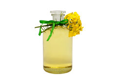 Rape seed oil. Glass bottle of rape seed oil with rape flowers and ribbon Stock Photography