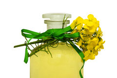 Rape seed oil. Glass bottle of rape seed oil with rape flowers and ribbon Stock Image