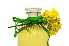 Rape seed oil Stock Image