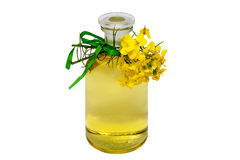 Rape seed oil Stock Photography