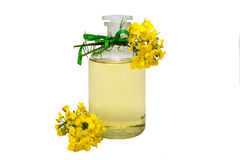Rape seed oil. Glass bottle of rape seed oil with rape flowers and ribbon Royalty Free Stock Photo