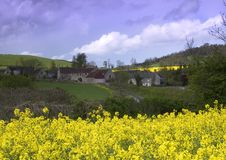 Rape seed village Royalty Free Stock Photos