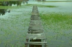 rapel湖支持船坞的遗骸 免版税库存图片