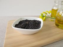 Rapeseed and canola oil Royalty Free Stock Image