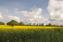 Rapeseed field and Eastham Oil Storage Depot Stock Images