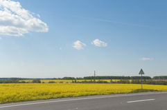 Rapeseed field near the road Stock Photo